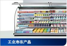 工业冷冻产品
